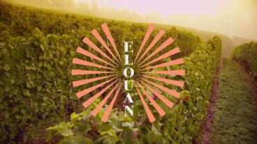 Artistic image of Elouan Rose label atop a vineyard shot